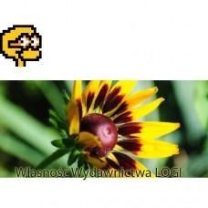 Puzzel nr 1, prosty Wiosenny kwiat