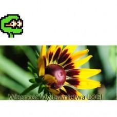Puzzel nr 1, średni Wiosenny kwiat