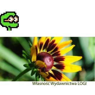 Puzzel nr 1, średni<br>Wiosenny kwiat