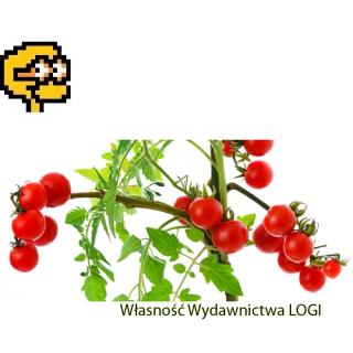 Puzzel nr 2, prosty<br>Kto grał w pomidora?