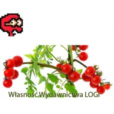 Puzzel nr 2, trudny Kto grał w pomidora?