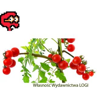 Puzzel nr 2, trudny<br>Kto grał w pomidora?