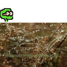 Puzzel nr 8, średni Deszcz